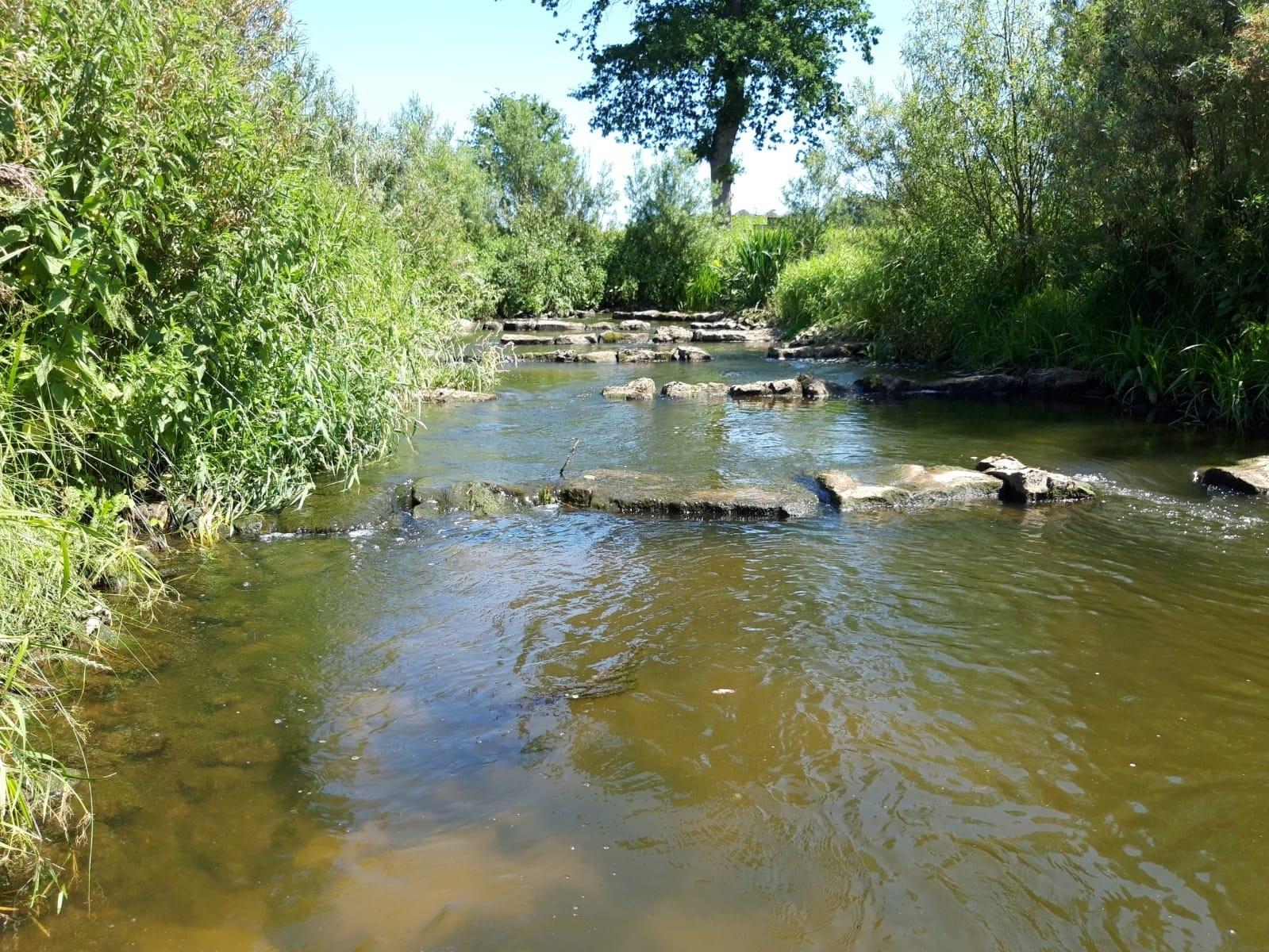 Die Steverumflut, ökologisch wertvoll. Der Aufwand hat sich für die Natur gelohnt.